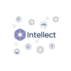 Axxon INTELLECT SW-INP-TTP-RTL